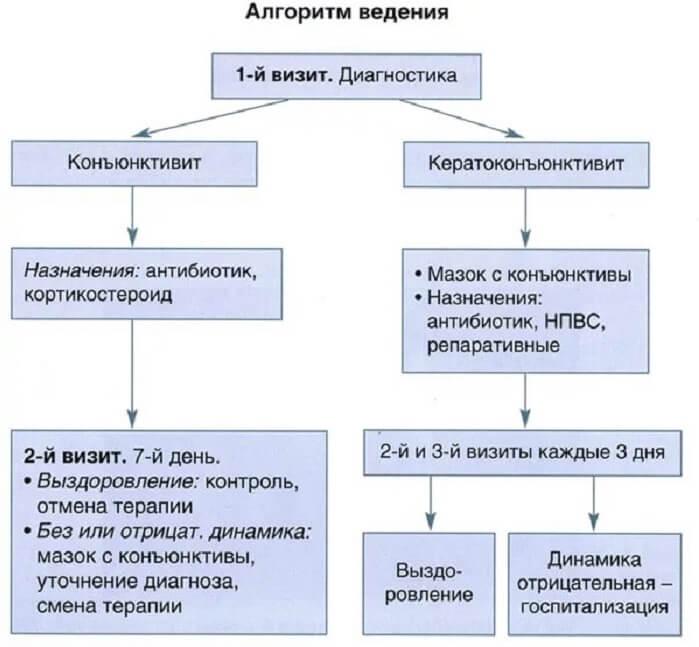 Алгоритм ведения заболеваний