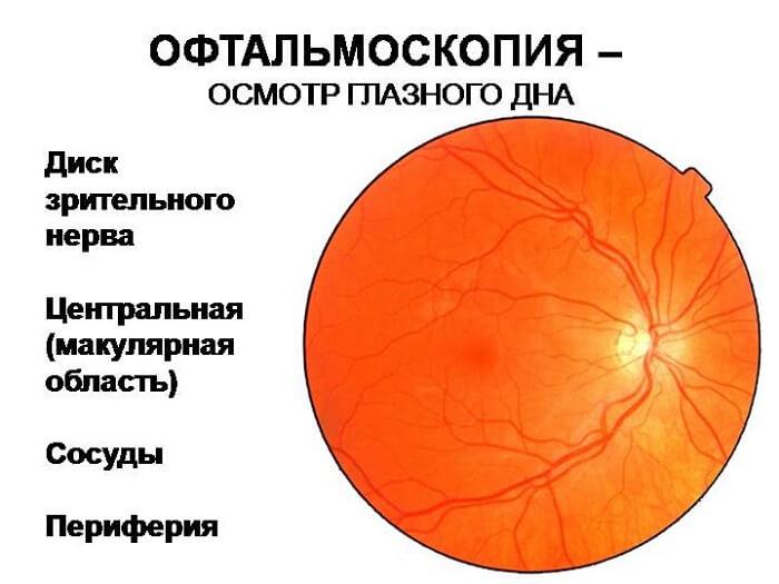 Офтальмоскопия для человека